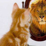 Kitten-Mirror-Lion-Bigger